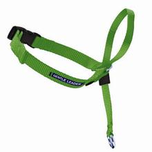 Gentle Leader Headcollar - Apple Green with Quick-Snap Buckle