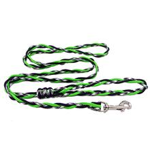 Ghost Dog Leash - Neon Green