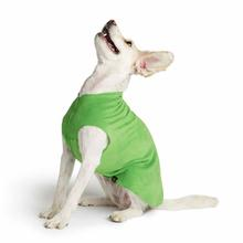 Gold Paw Fleece Dog Jacket - Grass