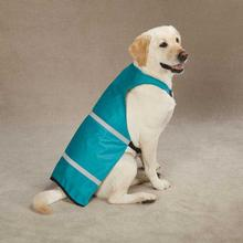 Guardian Gear Brite Reflective Dog Safety Vest - Bluebird