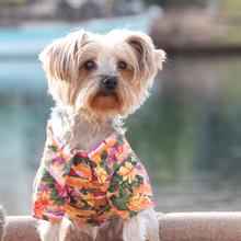 Hawaiian Camp Shirt by Doggie Design - Sunset Hibiscus
