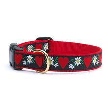 Hearts and Flowers Dog Collar by Up Country
