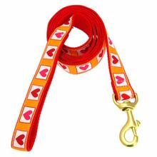 Hot Hearts Dog Leash by Up Country
