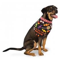 I'm Here for the Treats Halloween Dog Bandana
