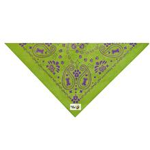 Insect Shield Paisley Dog Bandana - Green