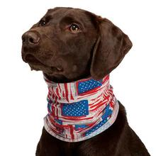 Insect Shield Patriotic Dog Neck Gaiter