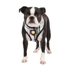 Junior Dog Harness by Puppia - Black