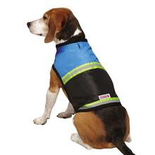 KONG Safety Dog Vest - Blue