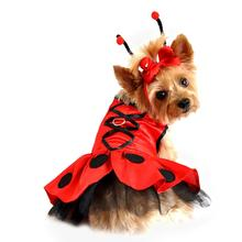 Lady Bug Fairy Dog Costume Harness Dress w/ Antennae and Leash