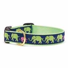 Leader of the Pack Dog Collar by Up Country