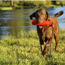 Lunker Interactive Dog Toy by Ruffwear - Sockeye Red