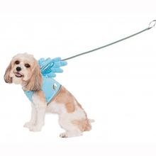 My Little Pony Rainbow Dash Wing Dog Harness Costume