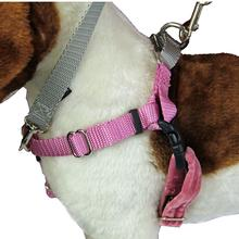 No-Pull Dog Harness Deluxe Training Package - Rose and Silver
