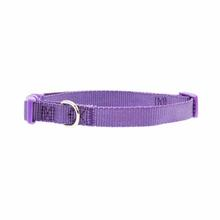Nylon Dog Collar by Zack & Zoey - Ultra Violet