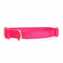 Nylon Dog Collar by Zack & Zoey - Raspberry Sorbet