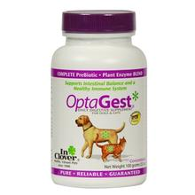 OptaGest Digestive Supplement for Dogs and Cats