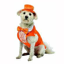 Orange Dog Tuxedo by Rasta Imposta