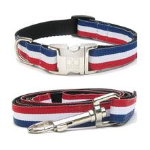 Patriotic Pooch Dog Collar and Leash Set by Diva Dog