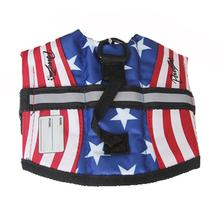 PAWZ Flag Dog Life Jacket