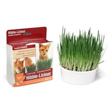 Petlinks Nibble-Licious Kit Cat Treat
