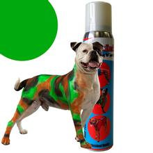 PetPaint Color Dog Hair Spray - Grayhound Green