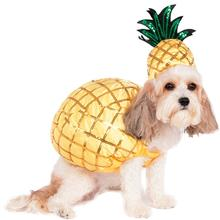 Pineapple Halloween Dog Costume