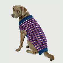 Popper's Dog Sweater - Jeweltones
