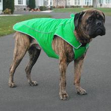 Precision Fit Dog Parka - Green