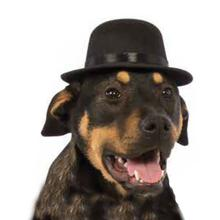 Rubie's Top Hat Dog Costume - Black