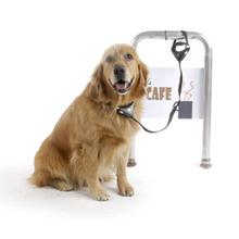 SafeSpot Locking Dog Leash and Collar