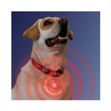 SPOTLit LED Collar Light and Safety Flasher