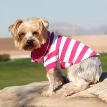 Striped Dog Polos - Pink Yarrow and White