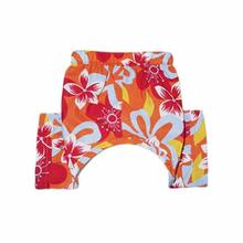 Tasmanian Dog Swim Trunk - Orange