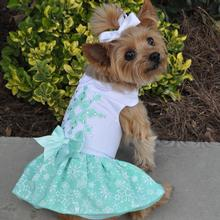 Turquoise Crystal Dog Dress with Matching Leash