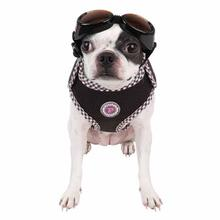 Venus Superior Dog Harness by Pinkaholic - Brown