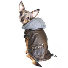 Vintage Bomber Dog Jacket by Hip Doggie - Gray Hood