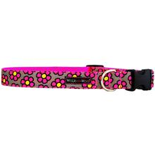 WaLk-e-Woo Pink Daisies on Gray Dog Collar