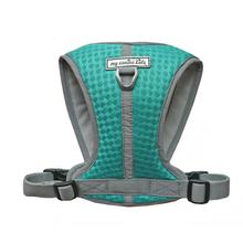 Walk-Fit Rugged Mesh Dog Harness by My Canine Kids - Turquoise