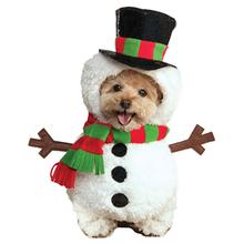 Walking Snowman Dog Costume