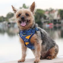 Wrap and Snap Choke Free Dog Harness - Island Sharks