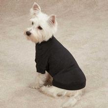 Zack & Zoey Basic Dog T-Shirt - Black